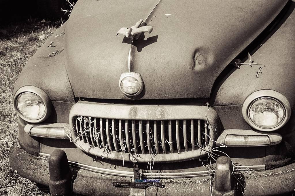 - Car Cemetary